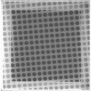 Quantifoil Holey Carbon Films 2nm Continuous Carbon On Top Small